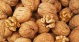 Грецкие орехи улучшают качество спермы ученые